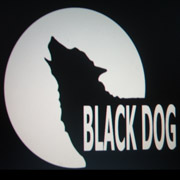 The Black Dog Project is a service user led community music group that provides Music sessions for beginners to ex professional musicians who have suffered mental health problems or disabilities. The Project is..
